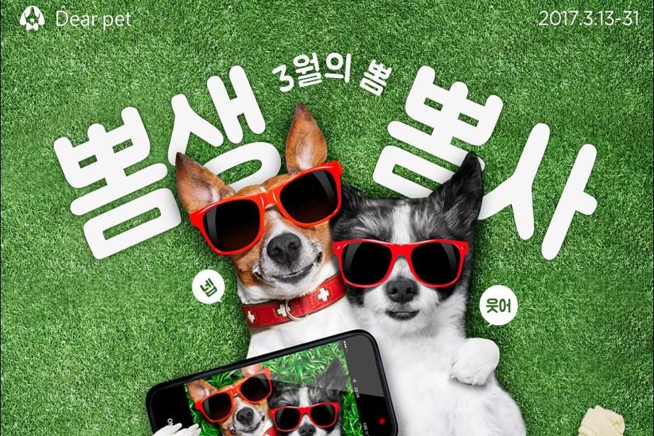 Photo of 롯데닷컴, 반려동물상품 전문매장 '디어펫 마트' 오픈