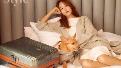 Photo of 하트만, 김효진과 함께한 '펫티켓' 트래블 컬렉션 공개