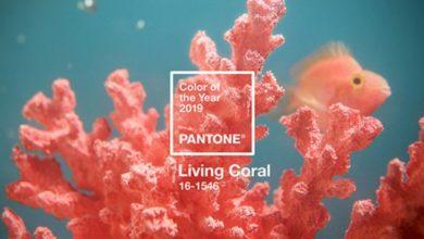 Photo of 팬톤, 2019년 올해의 색 '리빙 코랄'으로 선정