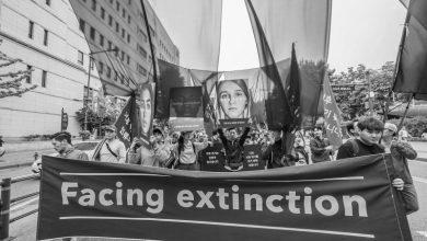 Photo of 파타고니아, '멸종을 마주하다' 캠페인 전개
